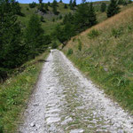 Mulattiera in cui si vedono le tracce di un trattore o di un fuoristrada