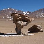 Arbol del Piedra (steinerner Baum)