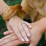 handen van bruidspaar samen met hondenpoot op de trouwfoto