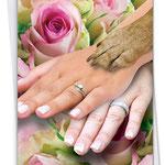 Prachtige handen van bruidjes samen met hondenpoot op de foto