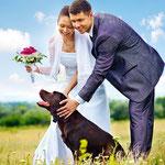 Klasieke foto van bruidspaar met hun labradot