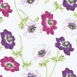 Klaproos paars/roze
