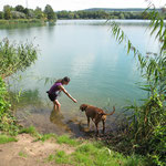 ...Nala war aber wieder nicht ins Wasser zu bekommen... :)