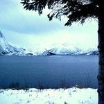 Bild 25-483 - Fjorde, schroffe Berge, weite Felder