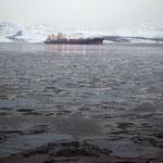 Bild 19-378 - Vor Kirkenes - Eisschollen im Meer - der Golfstrom erreicht das Eismeer nicht