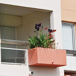Naturillusion auf dem Balkon