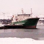 Bild 20-398 - Am Rand des Eismeers