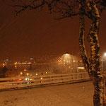 Bild 23-446 - Schneetreiben