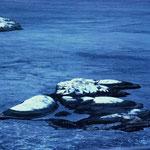 Bild 14-273 -  Auch wenn die Oberfläche ruhig erscheint, toben unter Wasser gefährliche, reissende Ströme.