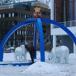 Bild 22-435 - Wo die Eisbären zuhause sind