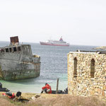 MS Explorer vor den Malvinas
