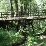 Alte Brücke im Ried, Nicola Erpen