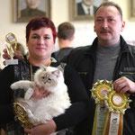 Невская маскарадная кошка Вишня Чнежная зима