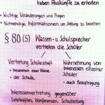 Präsentation zum §80 Nr.4-5 NSchG