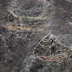 Drapeaux dans la montagne - Dege