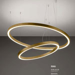 Light4 Pendelleuchten Ring gold brushed