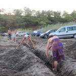 Ditches were dug to keep cars from driving on the beach