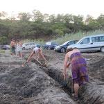Gräben wurden gegraben, damit keine Autos direkt zum Niststrand fahren können