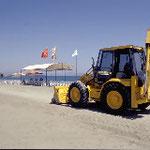 Verdichtung des Sandes durch schwere Fahrzeuge können Nester zerstören