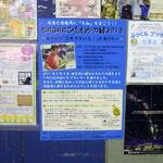 東久留米駅エレベーター横にも貼って頂いています!