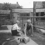 Manfred Middelborg (lks) und Martin Maas im Garten in der Langenstrasse 62