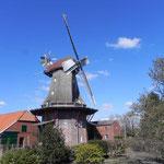 Foto: Holger Lauf  /  Ansicht der Mühle aus südöstlicher Richtung