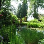 Der Bad Ausseer Alpengarten beherbergt auf 12.000 m² ca. 2000 Arten von Alpenpflanzen, Stauden und Gehölzen sowie pflanzliche Raritäten aus aller Welt.