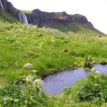 Am Seljalandsfoss