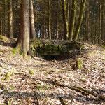 Bunker von 1938 zwischen Haselbach und Schmalzgruben