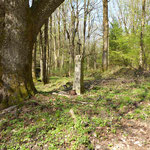 Die frühere Dorfmitte von Gibacht (Pozorka). Beim Gedenkkreuz liegt ein aufgefundener Topf.