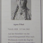 Sterbebild der Agnes Pöhnl aus Weißensulz (Bela nad Radbuzou)