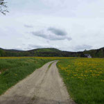 "Der ""Pucher"" bei Althütten, dahinter der Hüttenberg (Hutský vrch)."