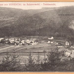 """Sofienthal: Vorne die """"Industrie"""" (Sägewerke Dietz u. Baumann), ganz links das ehem. Mautamt, da über den Arnstein die Straße nach Bayern führte."""