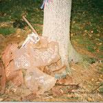 Ein frühes Foto von den Überresten in den 1990er Jahren (Foto via M. Drbal).