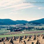 Gleißenberg mit Kornmandln.