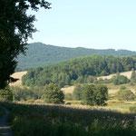 Wo der dichte Laubwald ist, stand Mauthaus (Mýtnice). Darüber der Hirschstein.