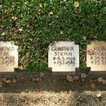Drei der am 25.02.1945 bei Taus (Domazlice) gefallenen RAD-Männer