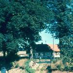 """Der """"Koisakeller"""" (Biergarten) in der Krautgasse."""