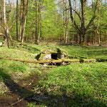 Der Dorfbrunnen von Gibacht. Der Bach führt zum Dorfteich.