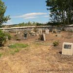 2015 wurde der Friedhof auf tschechische Initiative hin vom Gestrüpp befreit.
