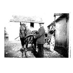 mon grand père sa première voiture - 1 cheval