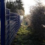 Zaun HS 8/6/8 mm in einer Sonderfarbe - blau