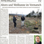 23.11.2020, Wiesbadener Kurier: Klasse-Klima-Wettbewerb