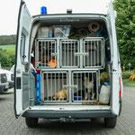 Jeder Rettungshund hat seinen Platz im Auto