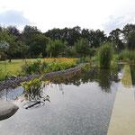 Naturschwimmteich mit separatem Schwimmbecken und Gegenstromanlage Einfassung Naturstein Travertin