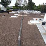 Extensive Dachbegrünung Kindergarten  Garten- und Landschaftsbau Gröne 1300m²