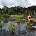 Schwimmteich mit Holzdeck aus Cumaru