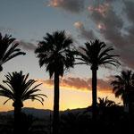 Mallorca Event Agentur