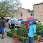 Jardin de la Frelonnière : la pluie n'arrête pas les asphodélien(ne)s