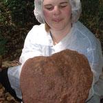 Meteoritenfund, Hafnerbach Teilstück 5